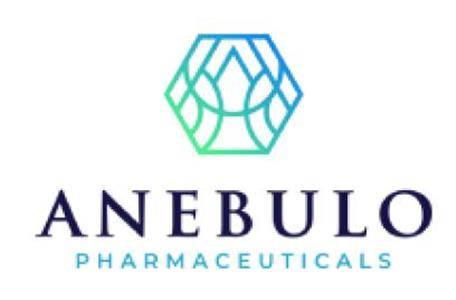 ANEB logo
